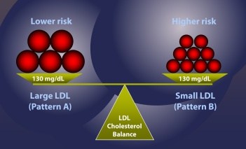 LDL-cholesteral-particle-size-matters